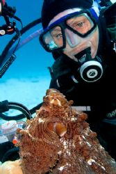 Photographer takes a break to enjoy an octopus. Canon 20D... by Kristin Anderson