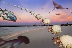 nik D2x Maldives, Ari Atoll, Vakarufalhi, Photoshop by Manfred Bail