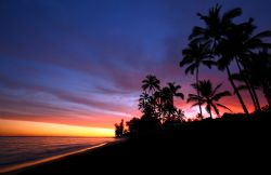 Hawaii Sunset. Taken in Waialua, HI this October. by Mathew Cook