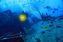 nik D200 - SB800 - wreck near Vakarufalhi - Ari Atoll by Manfred Bail