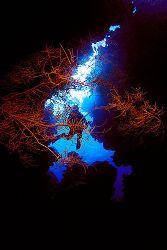Entry of a cave in St john's reef. Nikon F 80, 16mm by Jean-Louis Danan