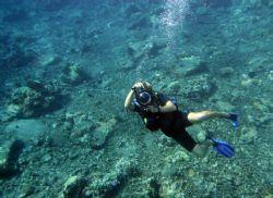 Eyes on You. Photo taken at Molokini Island in Maui, natu... by Mathew Cook