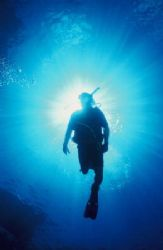 Silhouette of my dive buddy. Taken with a Nikonos V, 15mm... by Mike Smith