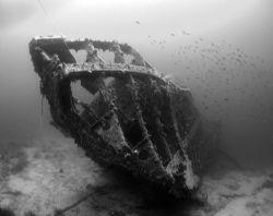 Image name: Skeleton of lost times It is a German torped... by Robert Roka