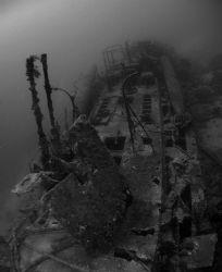 Imagename: Lethal Weapon Was taken at the S-57 wreck, Yo... by Robert Roka