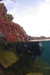 Mark in the shallows. Capernwray. D200, 16mm. by Derek Haslam