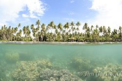 Truk Lagoon. by Jim Garland