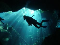 The sun shines on a diver, from the green jungle above, a... by Kenn Bolbjerg