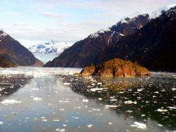 'Dive Alaska' Definitely dry suit conditions. One of the ... by Rick Tegeler
