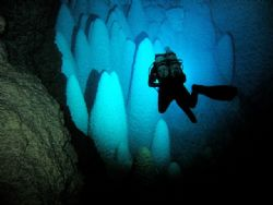 diver and the speleothemes in bonito - MS Brazil by Rodrigo Thome