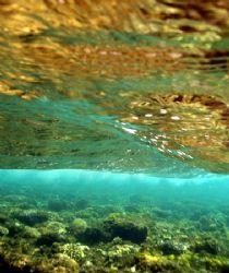 More wave action over the coral reef, next to Maria Schro... by Nikki Van Veelen