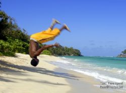 I have been slack- I return with a leap! there is some wa... by Fiona Ayerst