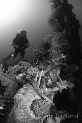 Reef on the Sankisan Maru - Chuuk by Jim Garland