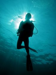 Blessed Diver! Taken In Tenggol With Canon S80. by Edvin Eng