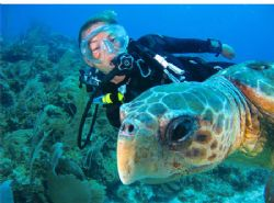 Bobbi swimming with a friendly turtle. San Pedro, Belize.... by Paul Holota