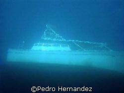 Dive Boat Palomino Diver photo from 40' deep camera DC310... by Pedro Hernandez