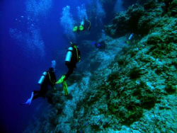 Some of our group on Santa Rosa Wall - Cozumel - Nikon 54... by James Ridgway