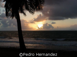 Sunrise in Palmas Del Mar and the Island Of Vieques at th... by Pedro Hernandez