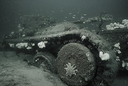 Valentine tank, in Moray Firth Scotland.