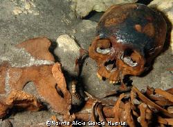 Mayan skeleton found in a sinkhole near Merida in the Yuc... by Norma Alicia García Huerta