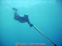 My Buddy Ronney,Lobo Island Fajardo, Puerto Rico by Pedro Hernandez
