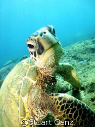 Dude...
