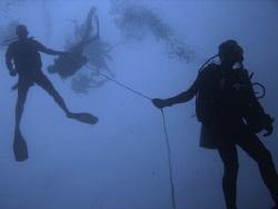 Descent by Roger Webb