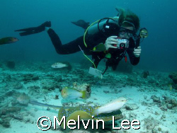 Digital Underwater Photography Diver by Melvin Lee