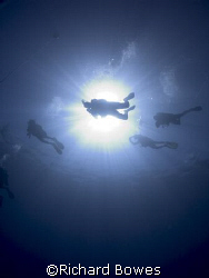 Divers. Provo, Turks and Caicos by Richard Bowes