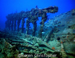 """The """"Wreck of the Rhone"""" in the BVI's.  by Karen Christopher"""