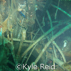 USS Oriskany, looking down in the cables of what use to b... by Kyle Reid