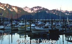 Harbor in Alaska by Michael Wicks