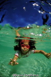 sosso the next generation diver enjoying the shallows at ... by Dave Stephens