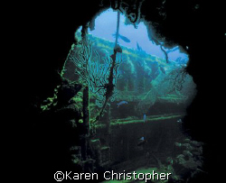 The Wreck of the Mizpah -- West Palm Beach, FL. Taken fro... by Karen Christopher