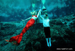Weeki Wachi Springs, central Florida.  Mermaid and Merman. by Victoria Collins