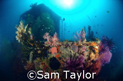 Wreck of the Henry Leith Madang province PNG by Sam Taylor