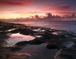 """Krozier Seascape"" Photo taken in Waialua, HI. Thanks for... by Mathew Cook"