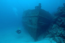 Hermes Wreck, Bermuca.  Nikon d70, 12-24 mm lens, no strobe. by David Heidemann
