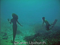 while diving sunset house reef a free diver came down to ... by Karen Upchurch