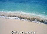 Seven Mile Beach/ Grand Cayman by Alissa Lansden