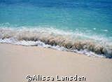 Seven Mile Beach/ Grand Cayman by Alissa Lansden