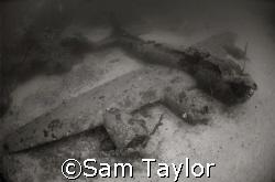 """Blackjack"" B-17, Milne Bay Provine PNG. Nikonos 5, 15mm ... by Sam Taylor"