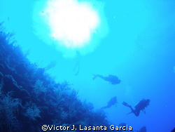 divers descending from the sun at two for you dive site i... by Victor J. Lasanta Garcia
