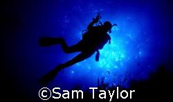 Diver OK, Natural light, Nikonos 5 & 28mm lens by Sam Taylor
