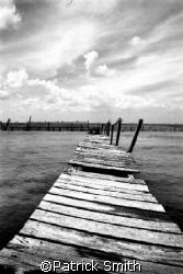 Hurricaine damaged dock , Isla Murjeres Mexico. by Patrick Smith