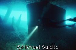 Under the Grove - Shot taken @ 140ft deep, natural light,... by Michael Salcito