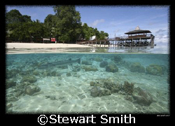 this shot was taken during a surface interval at sipadan.... by Stewart Smith