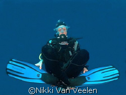 "My buddy doing some ""yoga"" underwater, taken at Sharks Ob... by Nikki Van Veelen"