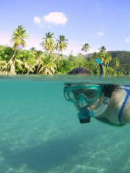 My wife Melissa snorkels into view in the shallows of Bre... by Terry Moore
