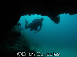 Diver in Key Large by Brian Gonzales